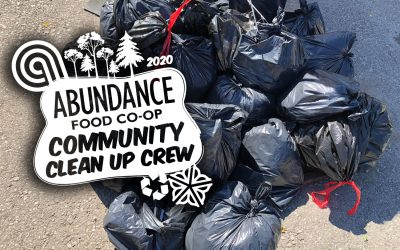 Community Clean Up Crew